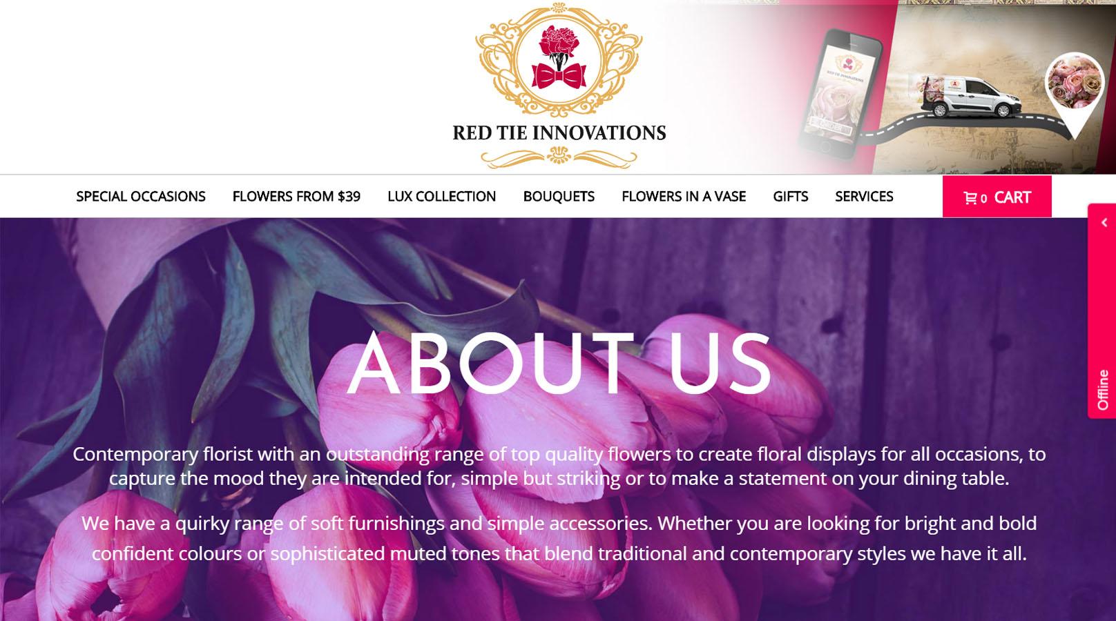 Red Tie Innovations eCommerce Lucrări Purple Media