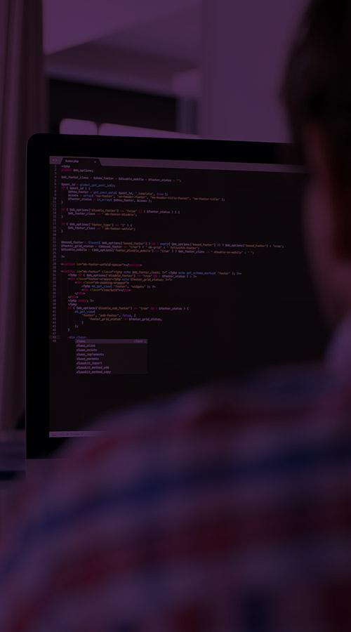 development purple site-uri magazine online landing page hosting servere